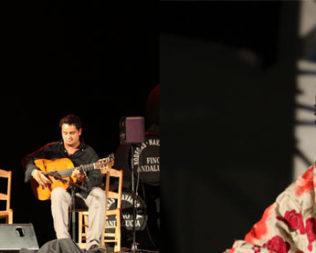 Cata Flamenca