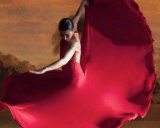 Ruta del Vino y el Flamenco en Fernán Núñez