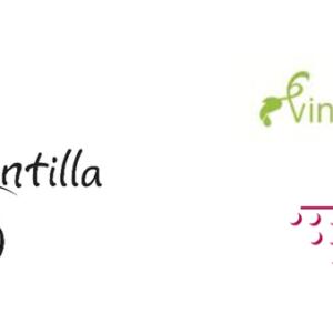 La Ruta del Vino Montilla-Moriles bate su record en visitantes durante el año 2018