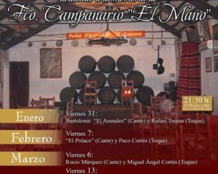 XVI Ciclo 2020 Vive el Flamenco