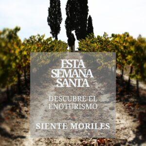 """Esta Semana Santa """"Descubre el Enoturismo, Siente Moriles"""""""